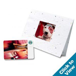Window Gift Card Holder - GCHC