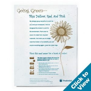 Seed Paper Letterhead/Flyer - PSFLY