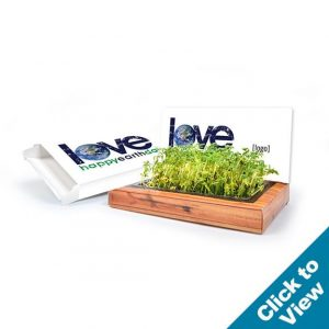 Plant-A-Gram Mailable Planting Kit - PAGK-EDEW