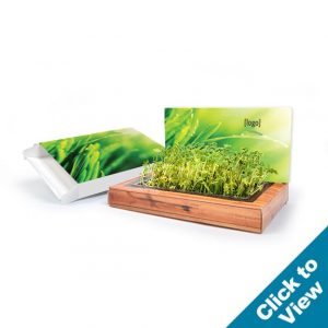 Plant-A-Gram Mailable Planting Kit - PAGK - EW