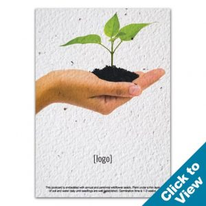 Seed Paper Postcard, Large - PSP-Large - EW
